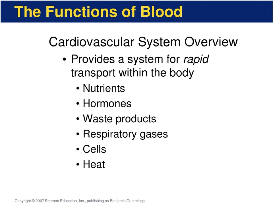 rapid transport within the body Nutrients