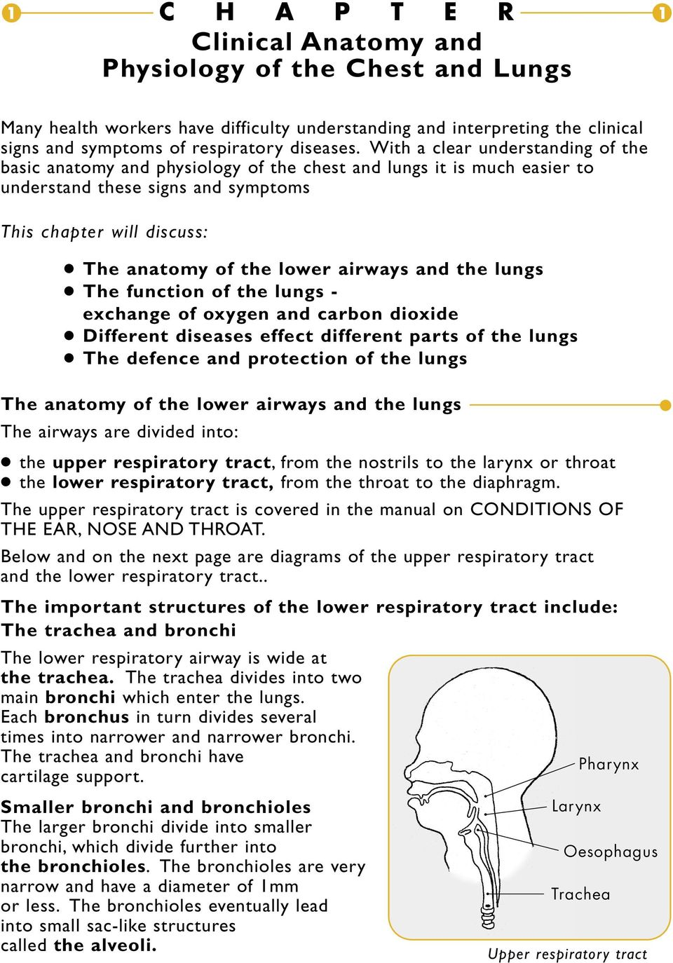 Clinical Anatomy and Physiology of the Chest and Lungs - PDF