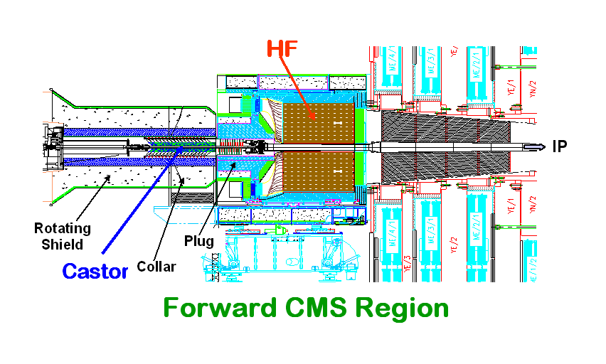 CMS Hadron Forward (HF) ZOOM in FORWARD