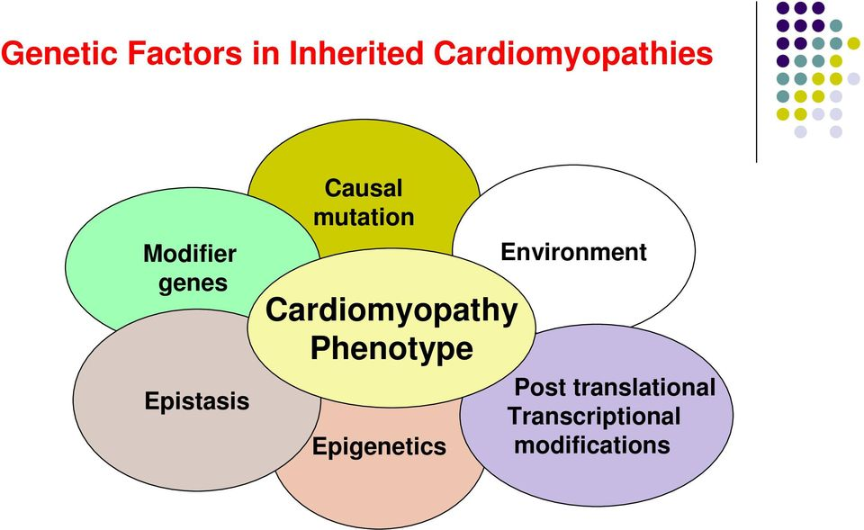 Cardiomyopathy Phenotype Epigenetics