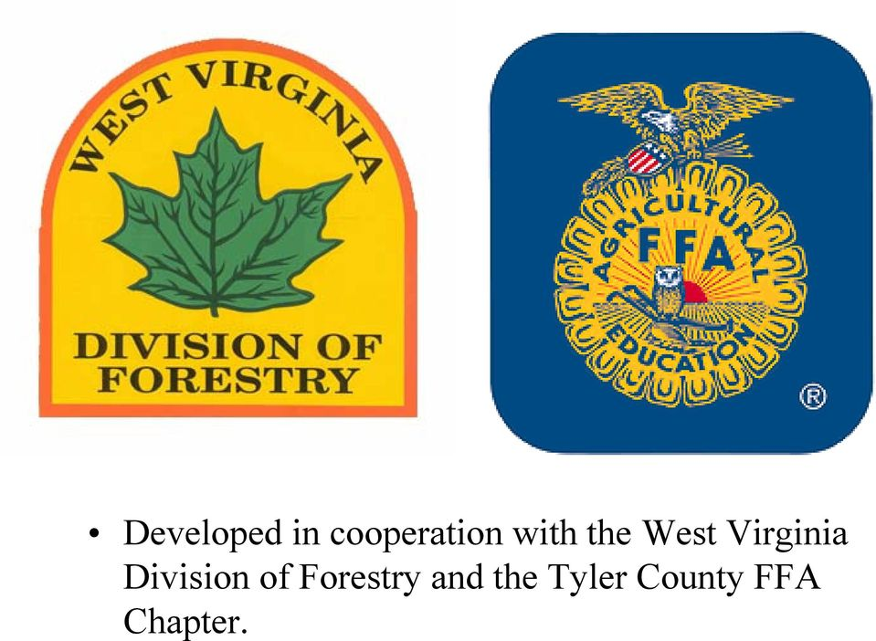Division of Forestry and