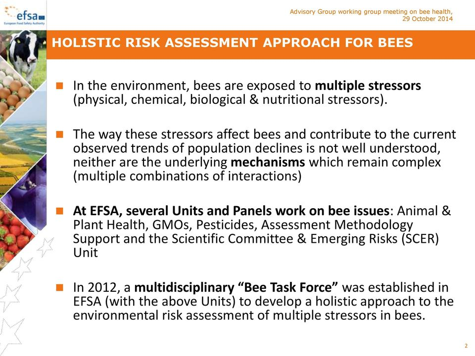 (multiple combinations of interactions) At EFSA, several Units and Panels work on bee issues: Animal & Plant Health, GMOs, Pesticides, Assessment Methodology Support and the Scientific