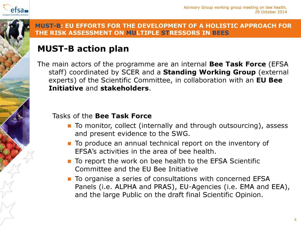 Tasks of the Bee Task Force To monitor, collect (internally and through outsourcing), assess and present evidence to the SWG.