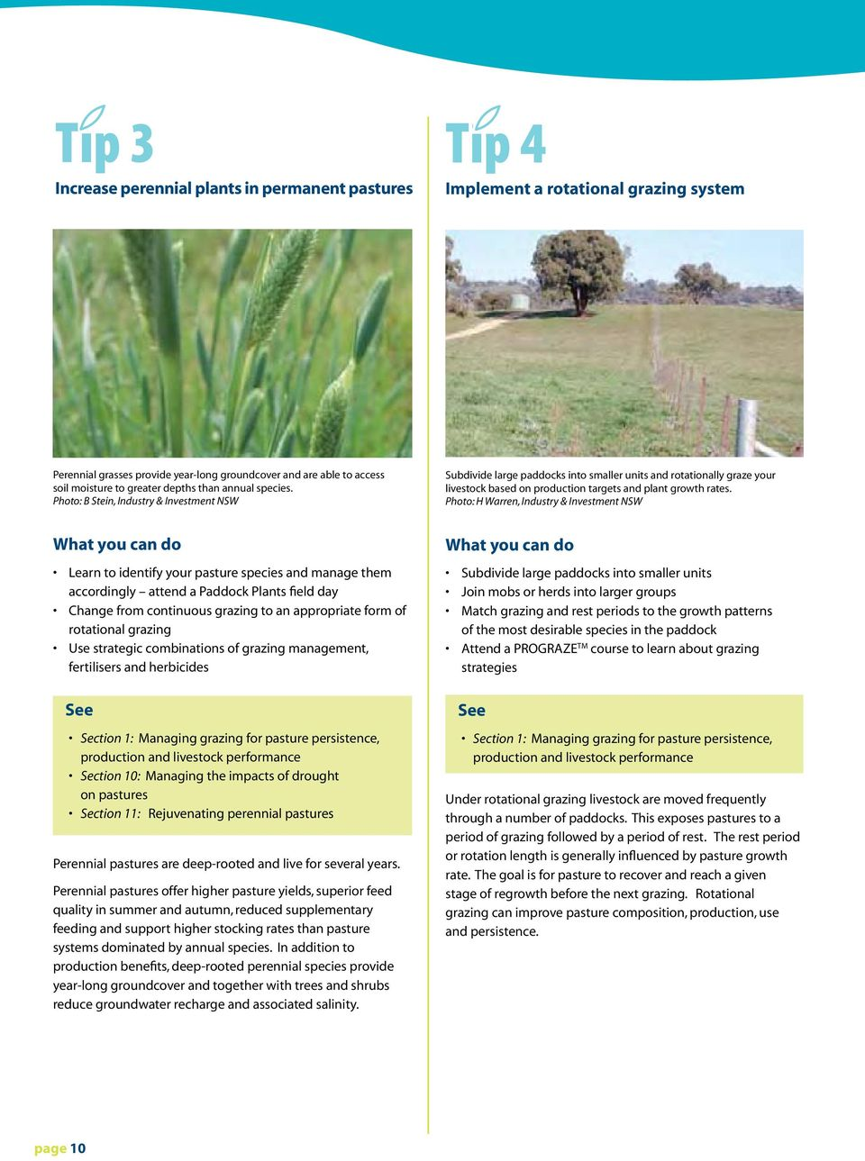 Photo: B Stein, Industry & Investment NSW Subdivide large paddocks into smaller units and rotationally graze your livestock based on production targets and plant growth rates.
