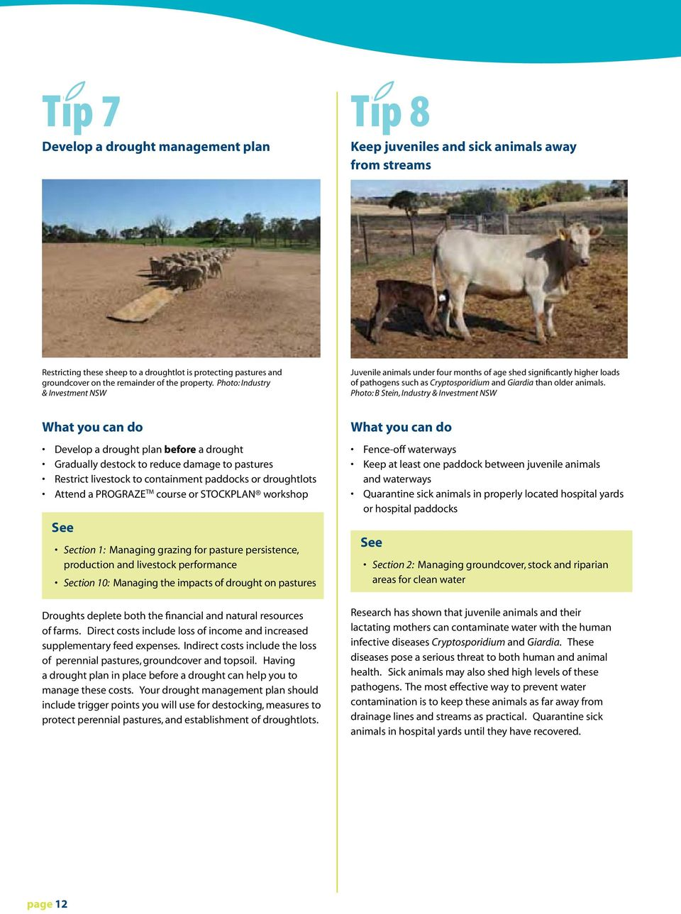 Photo: B Stein, Industry & Investment NSW What you can do Develop a drought plan before a drought Gradually destock to reduce damage to pastures Restrict livestock to containment paddocks or