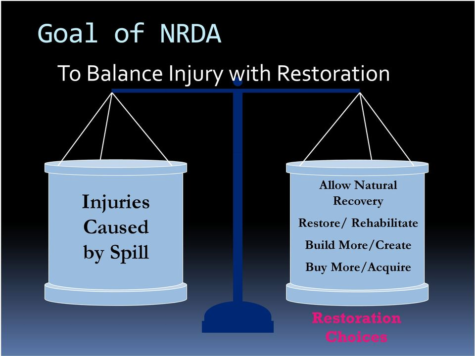 Natural Recovery Restore/ Rehabilitate