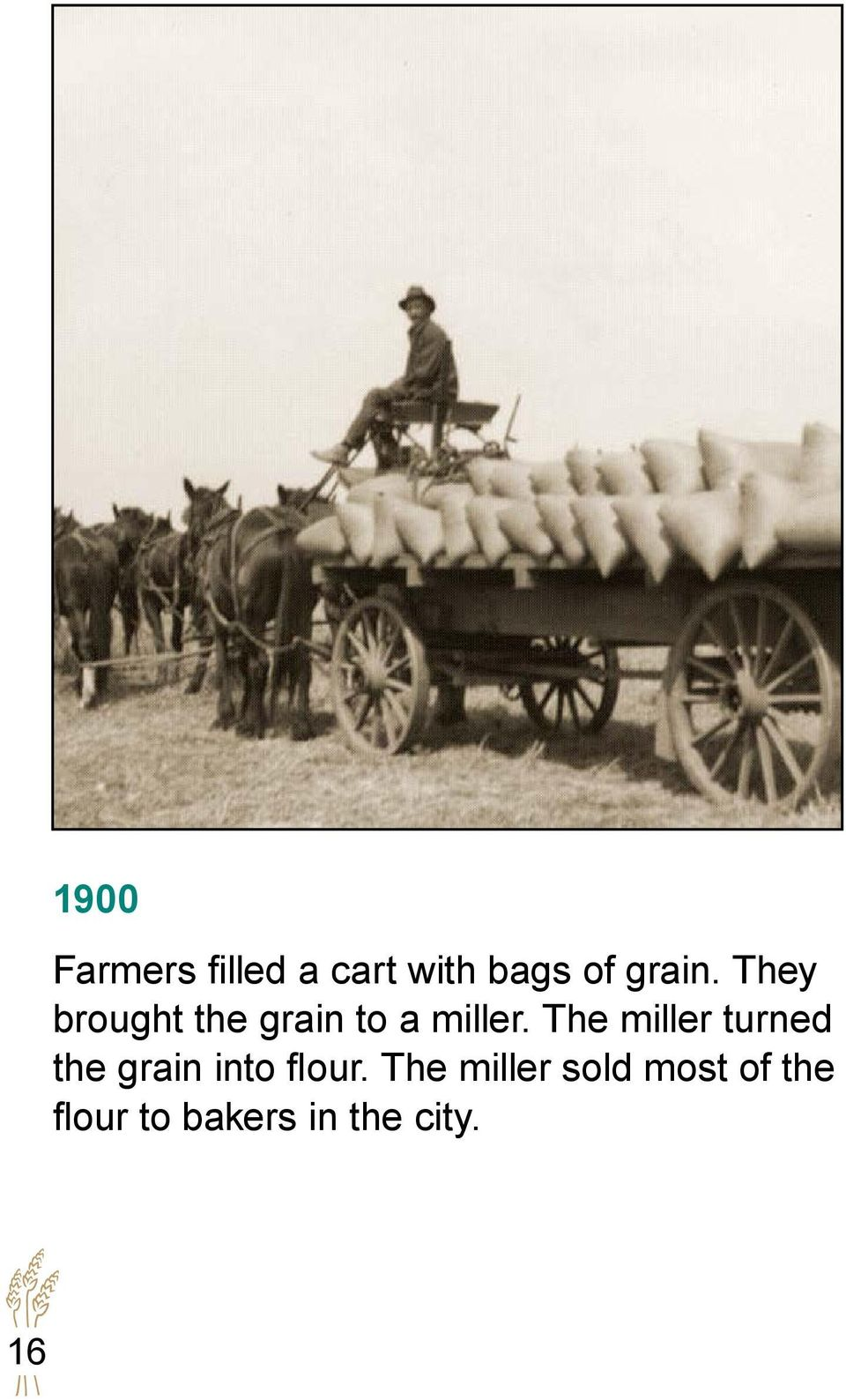 The miller turned the grain into flour.