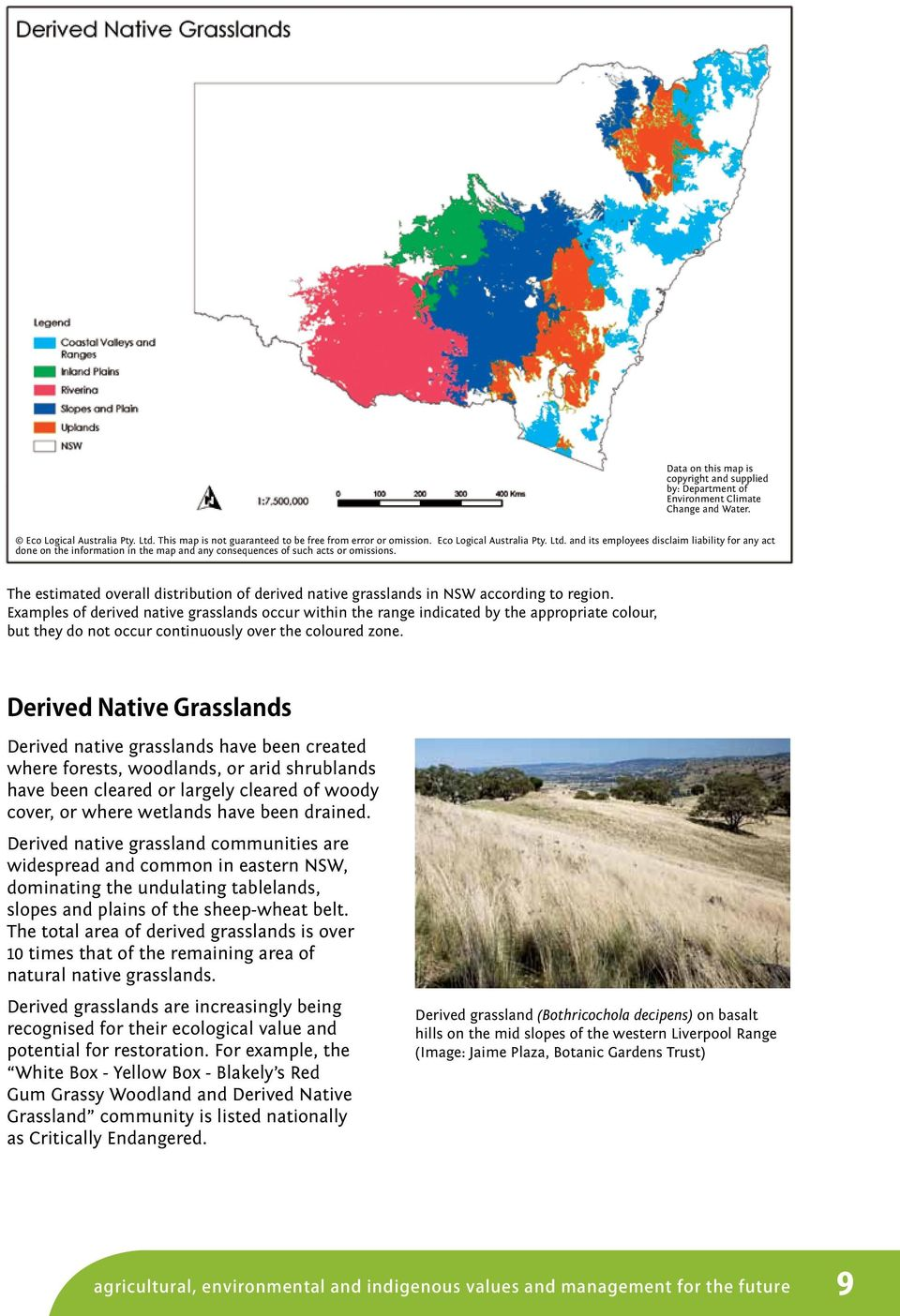 The estimated overall distribution of derived native grasslands in NSW according to region.
