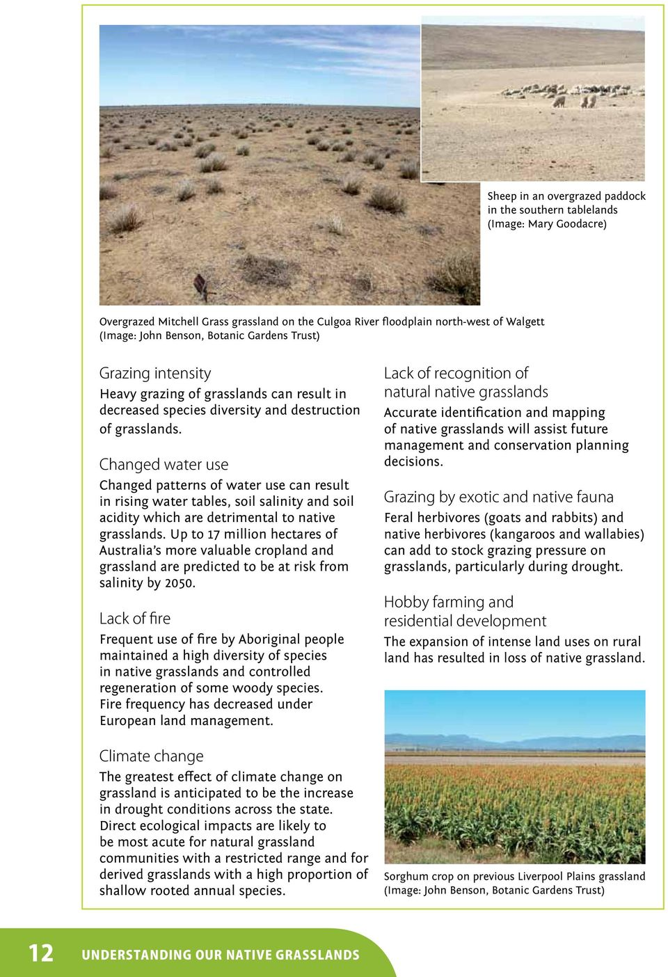 Changed water use Changed patterns of water use can result in rising water tables, soil salinity and soil acidity which are detrimental to native grasslands.