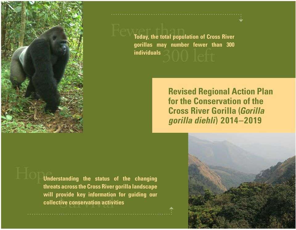 gorilla diehli) 2014 2019 Hope Understanding the status of the changing threats across the Cross