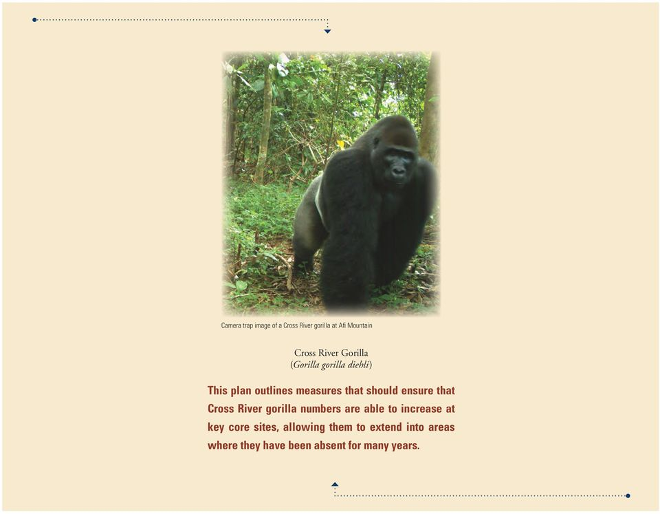 ensure that Cross River gorilla numbers are able to increase at key core