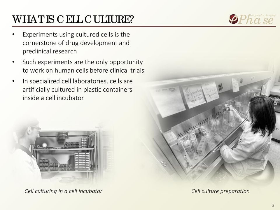 research Such experiments are the only opportunity to work on human cells before clinical