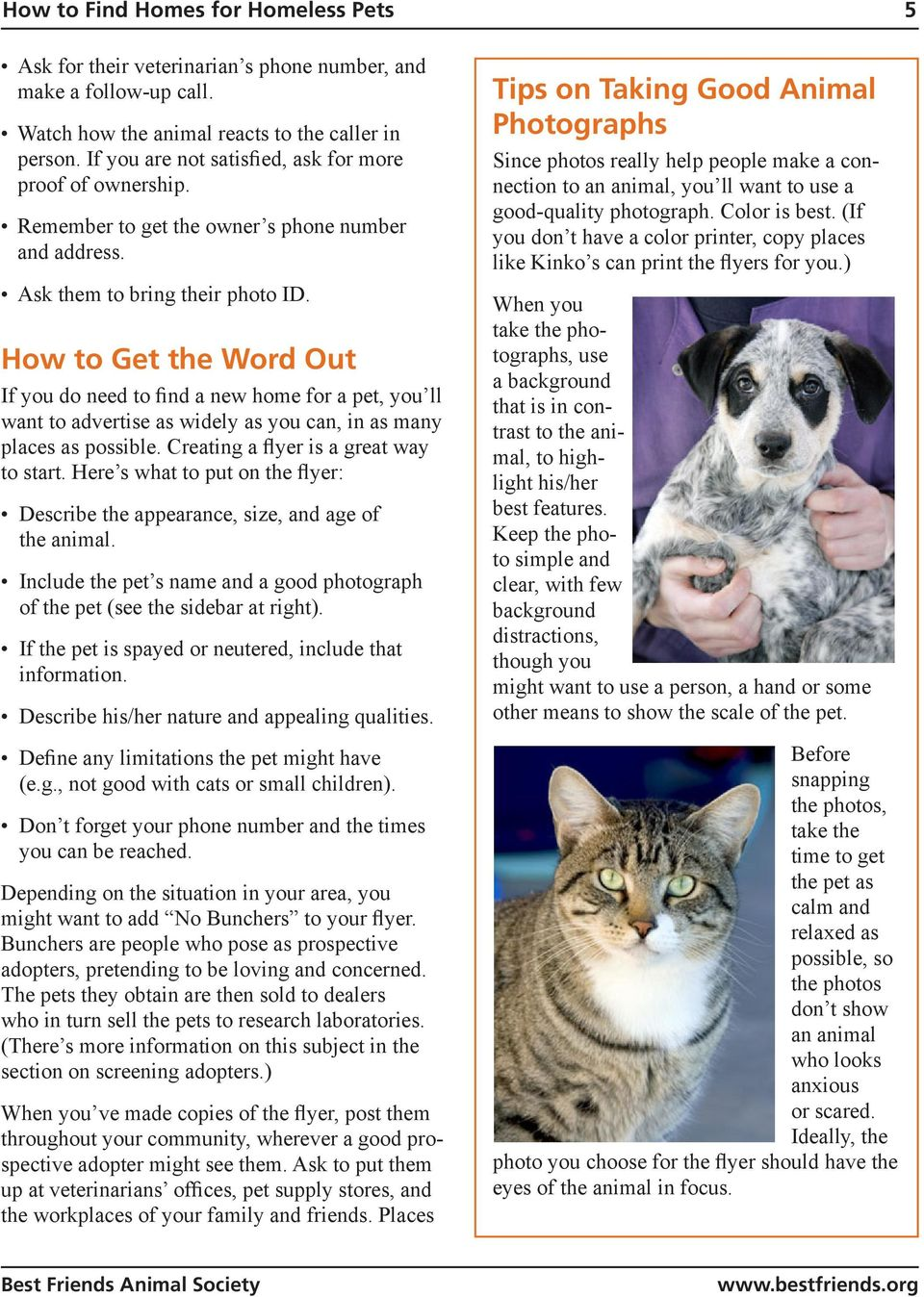 How to Get the Word Out If you do need to find a new home for a pet, you ll want to advertise as widely as you can, in as many places as possible. Creating a flyer is a great way to start.