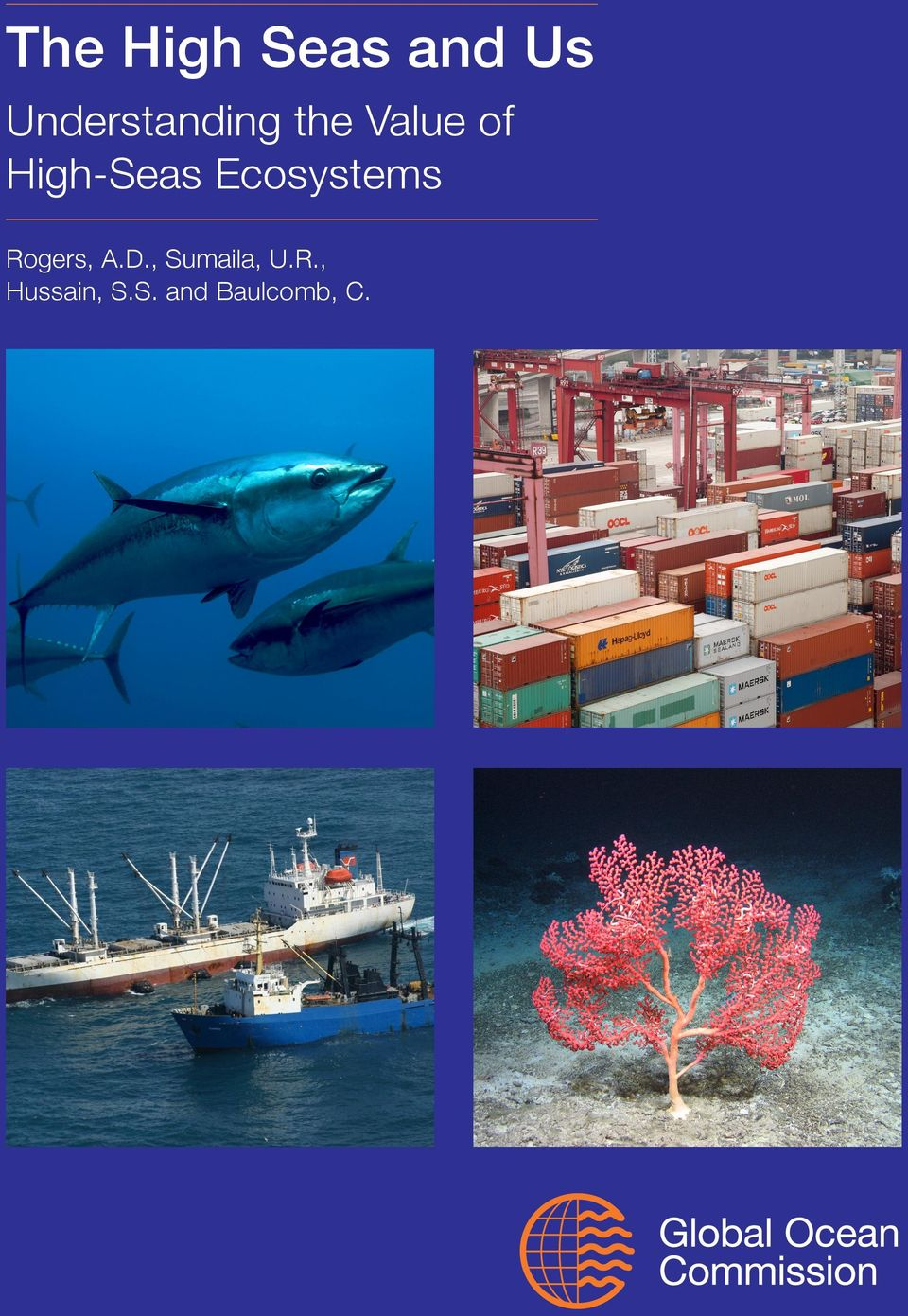 High-Seas Ecosystems Rogers, A.