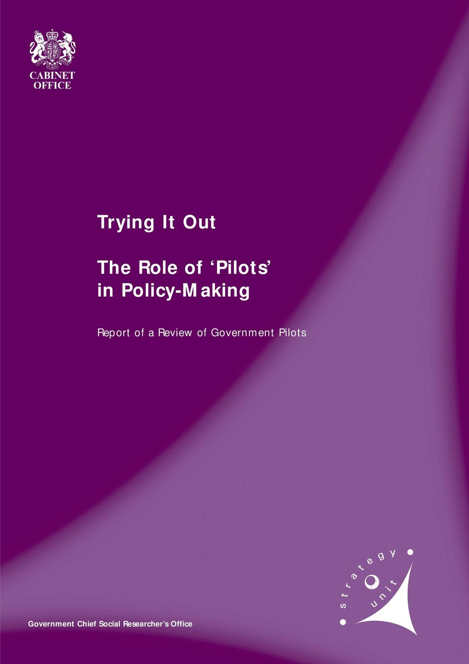 Review of Government Pilots