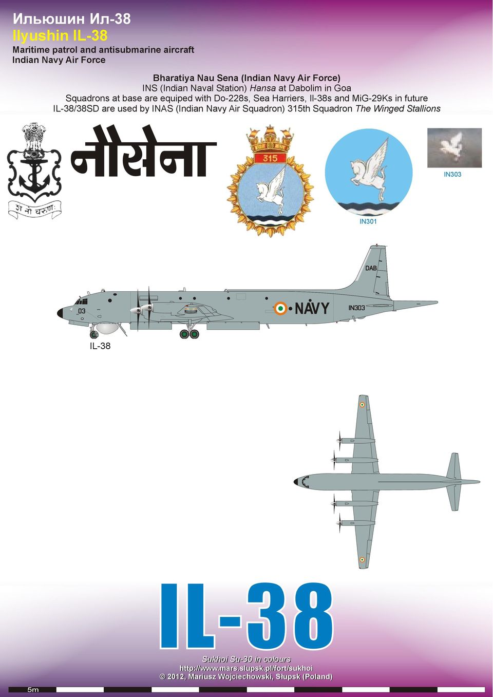 Goa Squadrons at base are equiped with Do-228s, Sea Harriers, Il-38s and MiG-29Ks in future