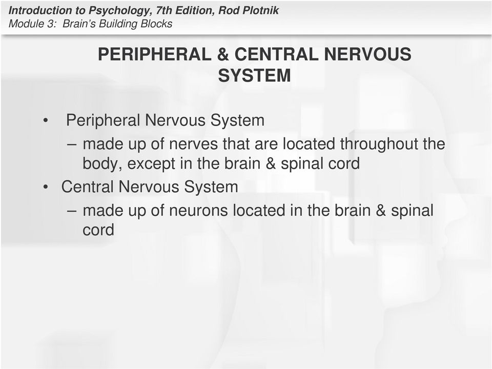 body, except in the brain & spinal cord Central Nervous