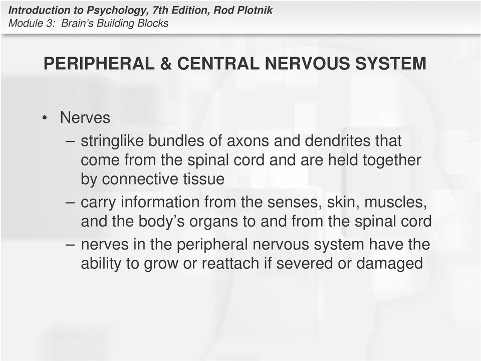 from the senses, skin, muscles, and the body s organs to and from the spinal cord nerves