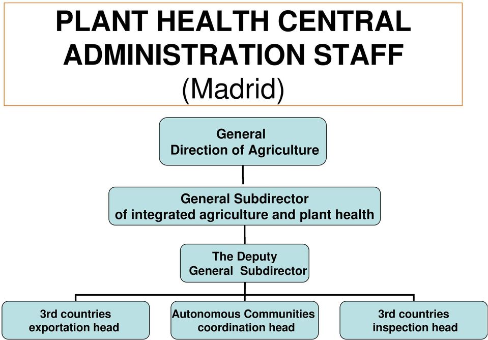 plant health The Deputy General Subdirector 3rd countries exportation