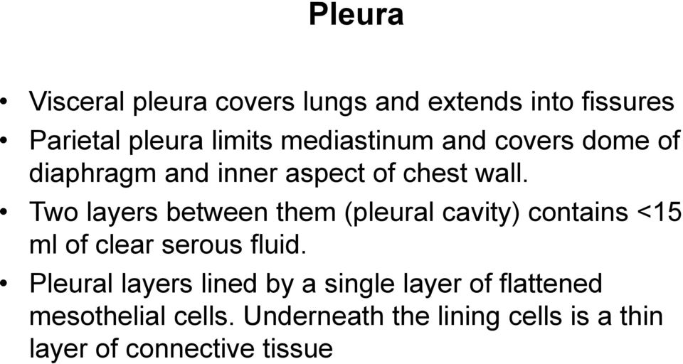 Two layers between them (pleural cavity) contains <15 ml of clear serous fluid.