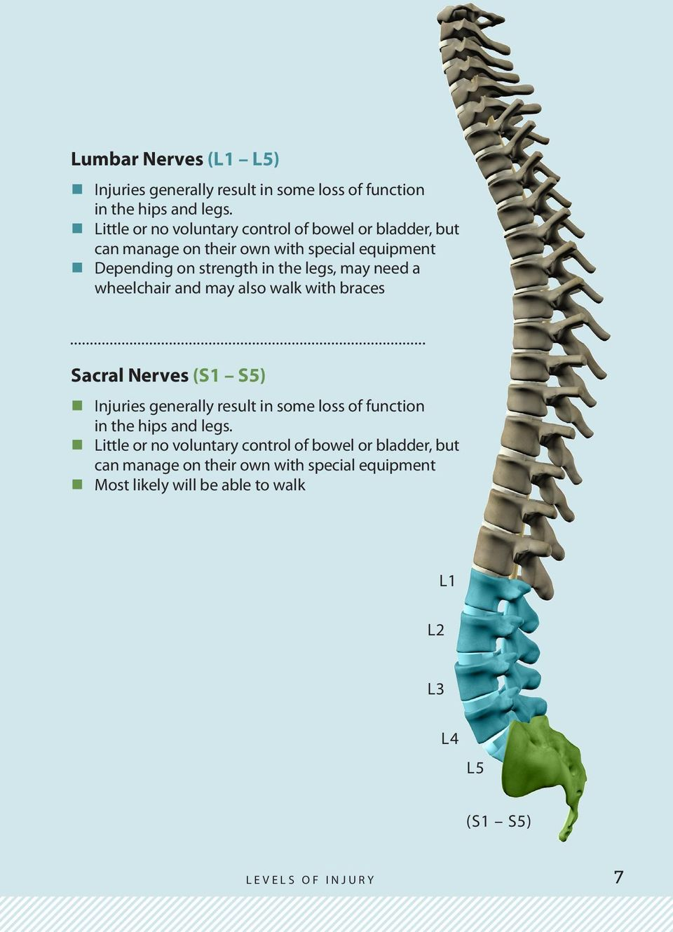 need a wheelchair and may also walk with braces Sacral Nerves (S1 S5) Injuries generally result in some loss of function in the hips and legs.