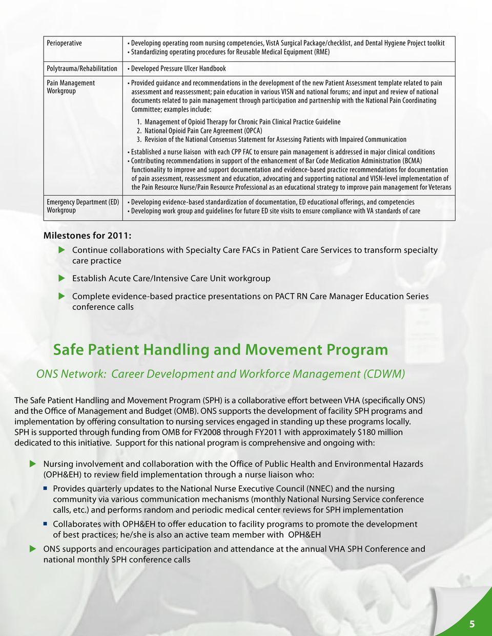 Patient Assessment template related to pain assessment and reassessment; pain education in various VISN and national forums; and input and review of national documents related to pain management