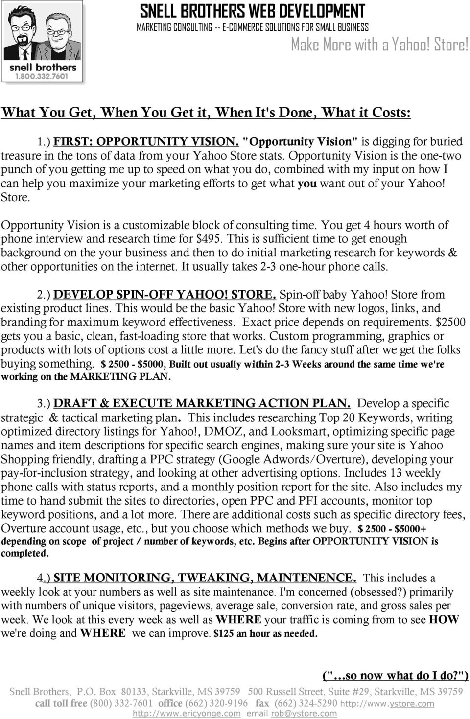 Yahoo! Store. Opportunity Vision is a customizable block of consulting time. You get 4 hours worth of phone interview and research time for $495.