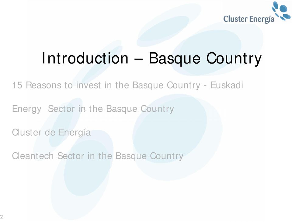 Energy Sector in the Basque Country Cluster