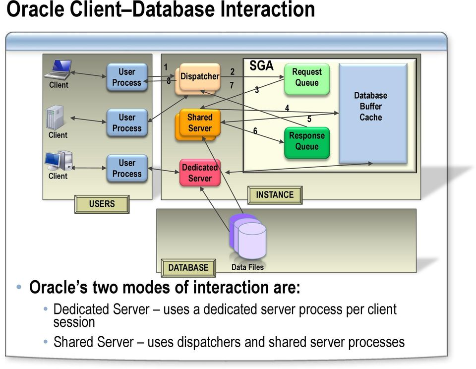 INSTANCE DATABASE Data Files Oracle s two modes of interaction are: Dedicated Server uses a