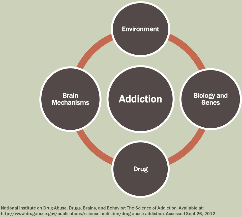 Drugs, Brains, and Behavior: The Science of Addiction.