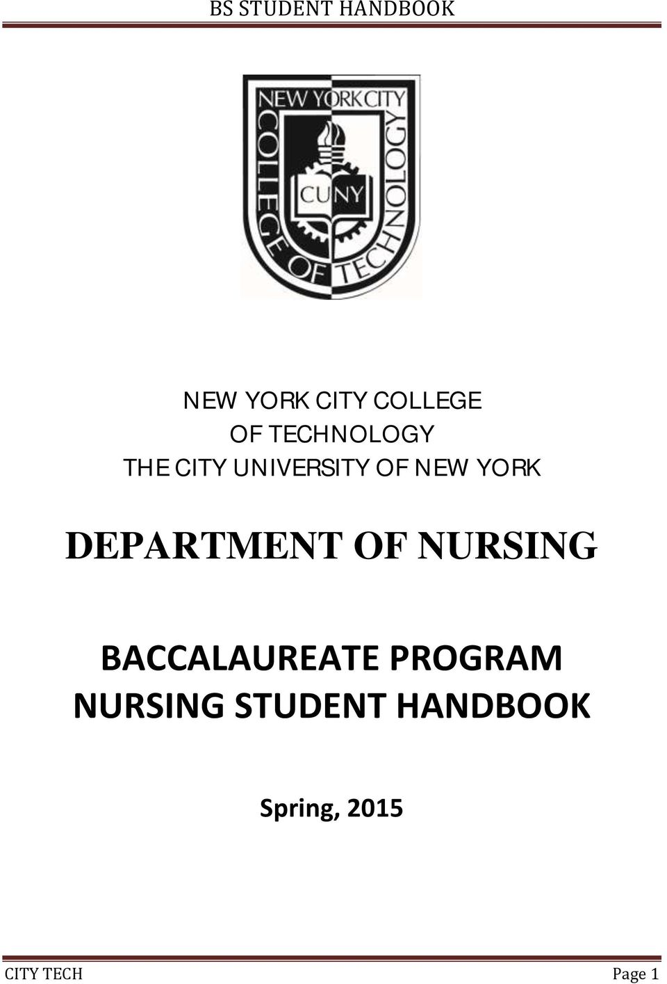 NURSING BACCALAUREATE PROGRAM NURSING