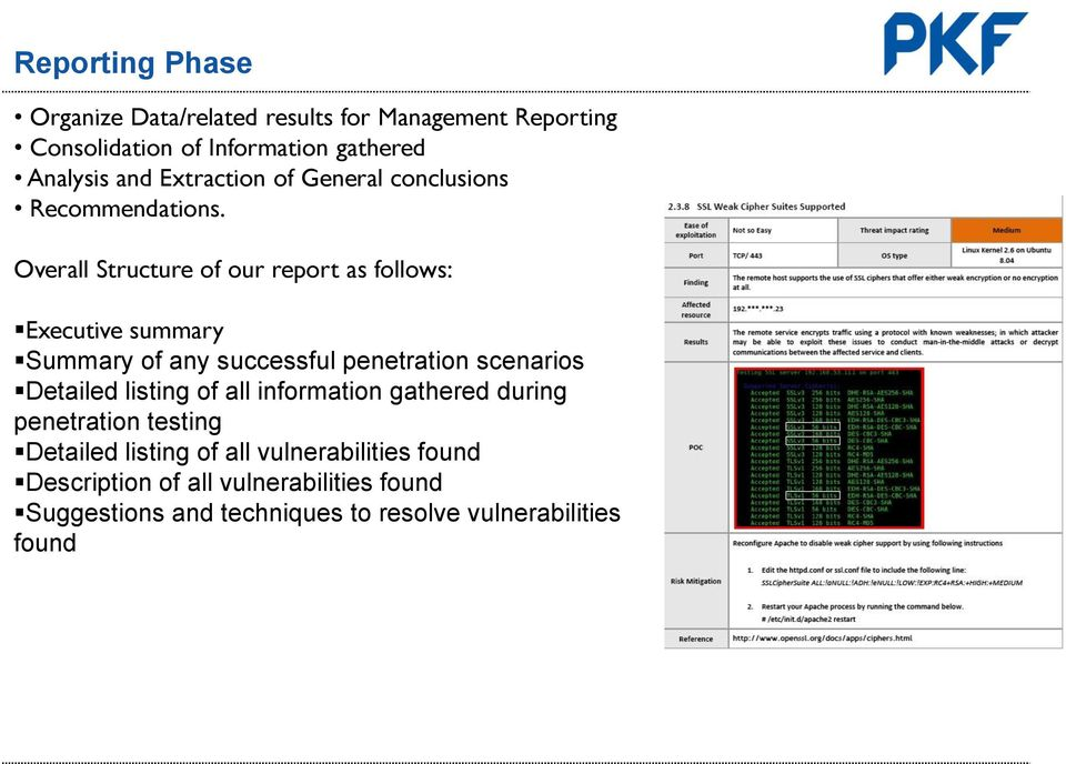 Overall Structure of our report as follows: Executive summary Summary of any successful penetration scenarios Detailed