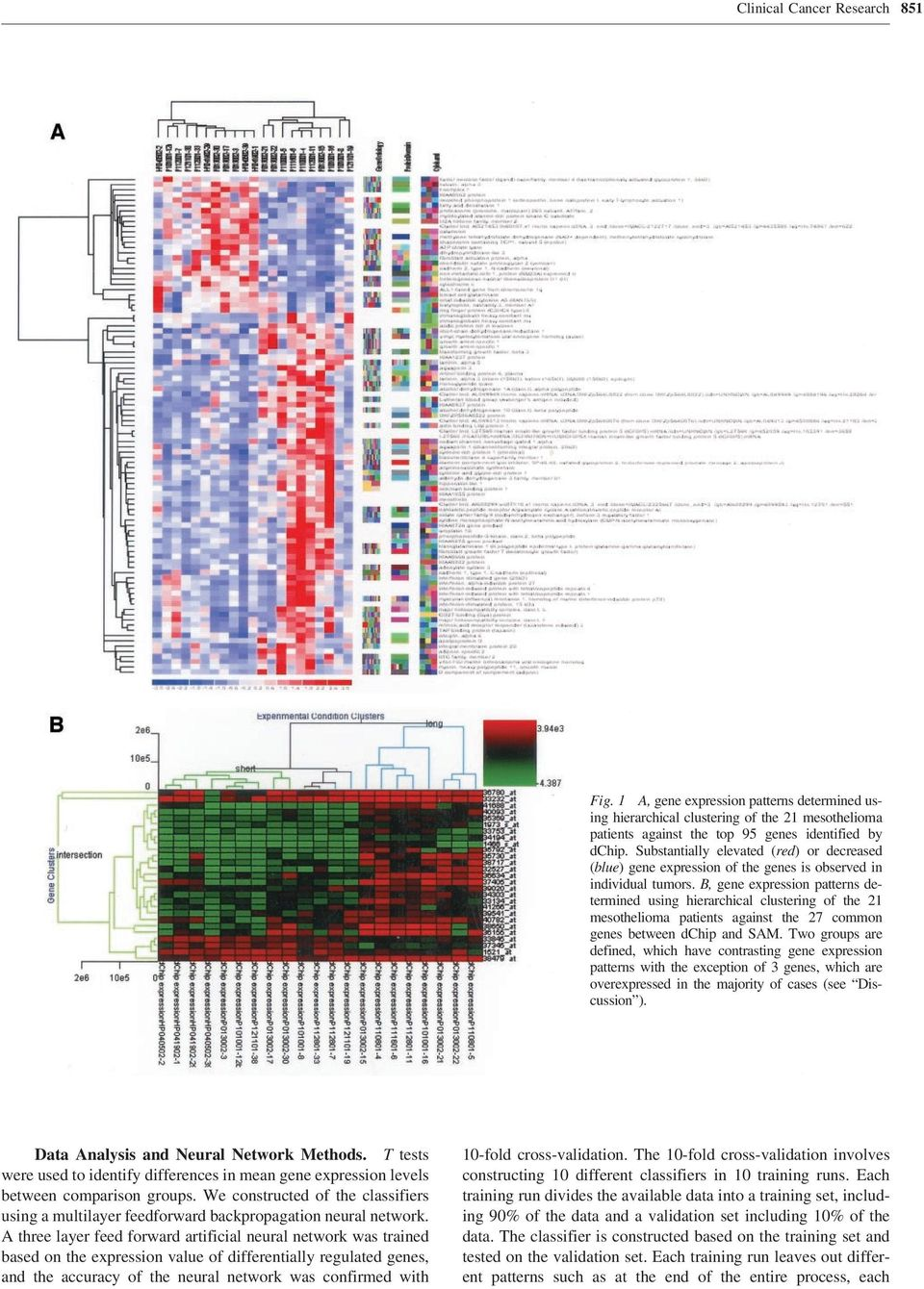 B, gene expression patterns determined using hierarchical clustering of the 21 mesothelioma patients against the 27 common genes between dchip and SAM.