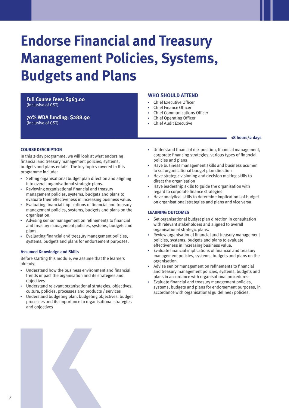 financial and treasury management policies, systems, budgets and plans entails.