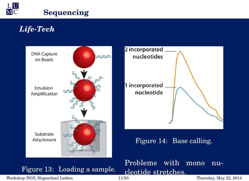 Problems with mono nucleotide stretches.