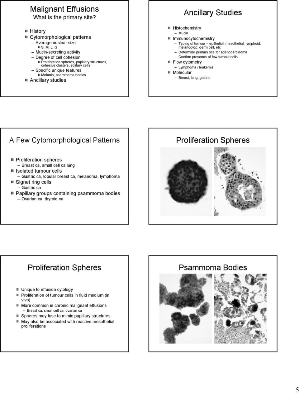Specific unique features Melanin, psammoma bodies Ancillary studies Ancillary Studies Histochemistry Mucin Immunocytochemistry Typing of tumour epithelial, mesothelial, lymphoid, melanocytic, germ