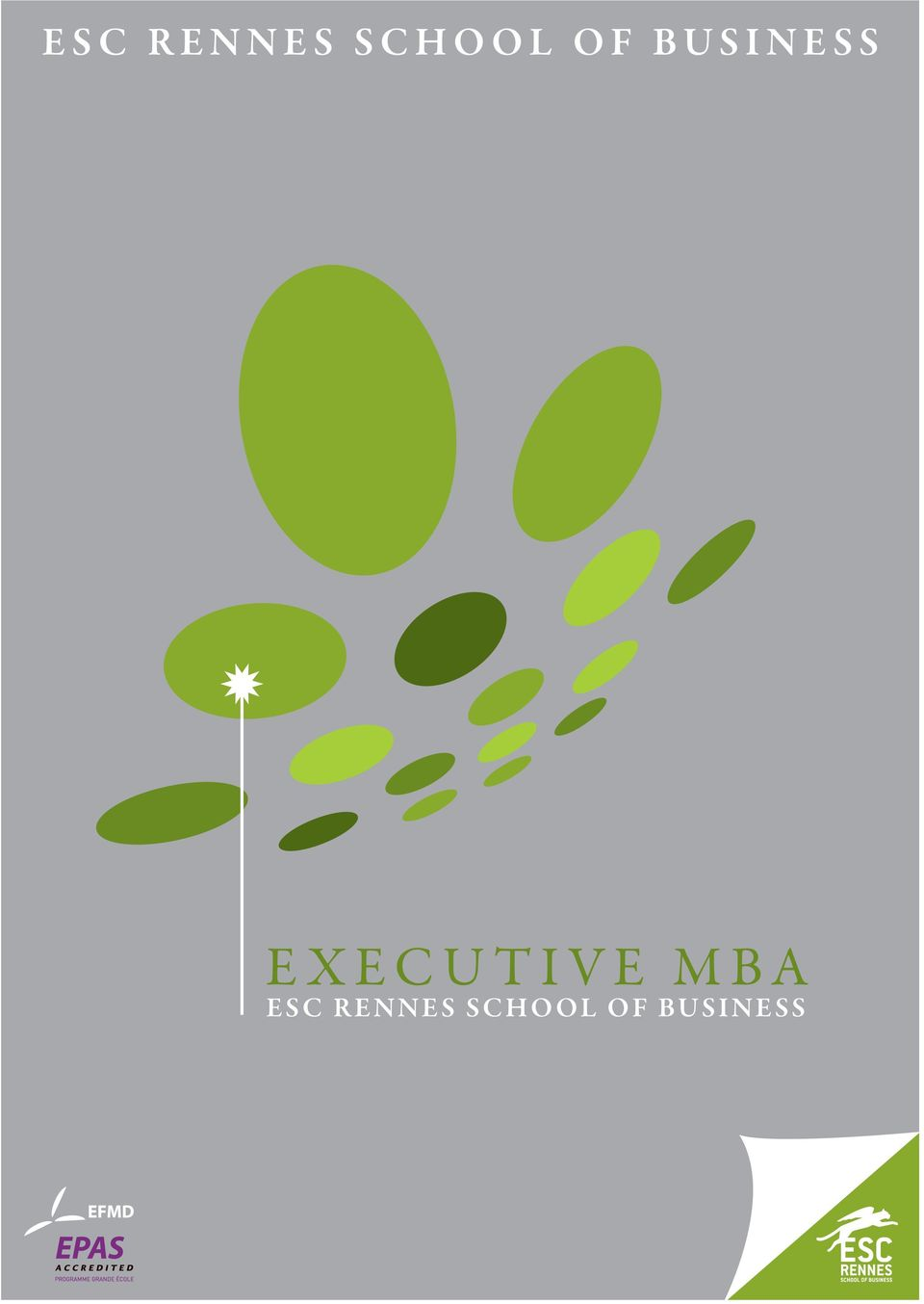 EXECUTIVE MBA  OF