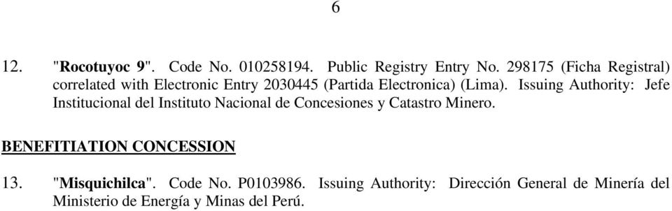 Issuing Authority: Jefe Institucional del Instituto Nacional de Concesiones y Catastro Minero.