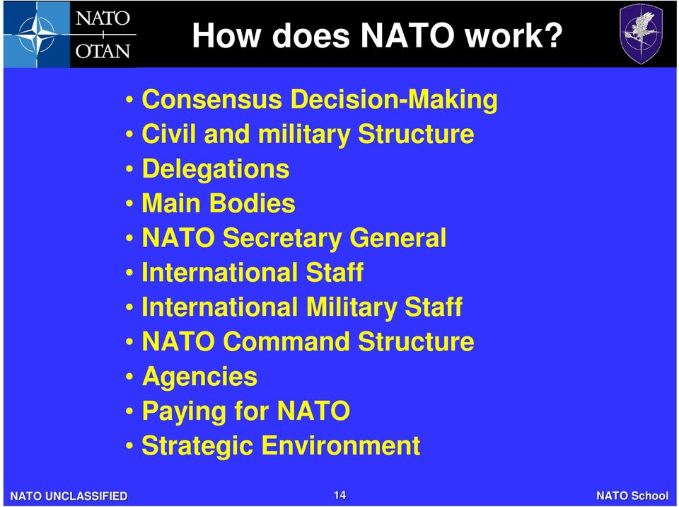 Delegations Main Bodies NATO Secretary General International