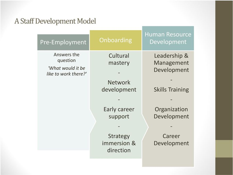 ' Onboarding Cultural mastery Network development Early career support Strategy