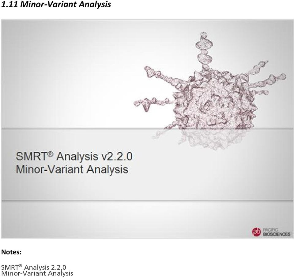 SMRT Analysis 2.