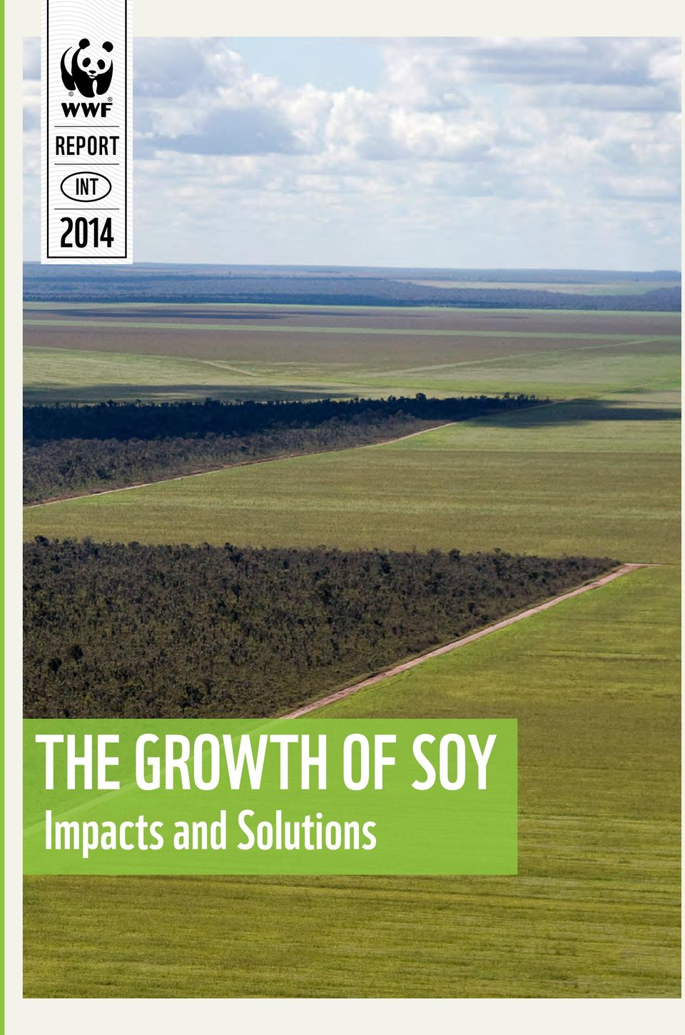 Growth of Soy