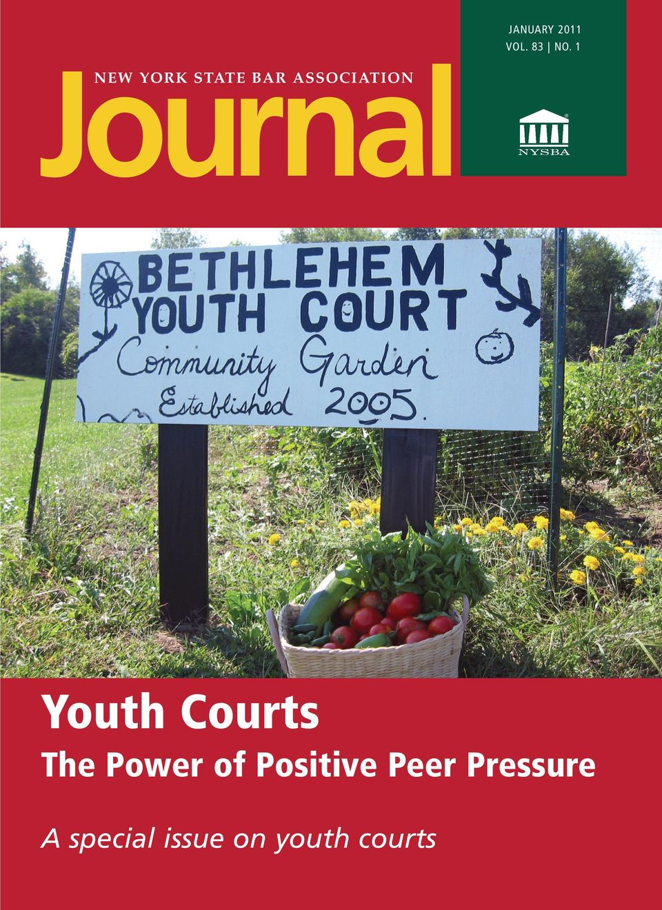 ASSOCIATION Youth Courts The Power
