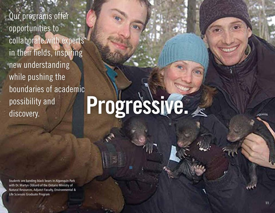 Students are banding black bears in Algonquin Park with Dr.