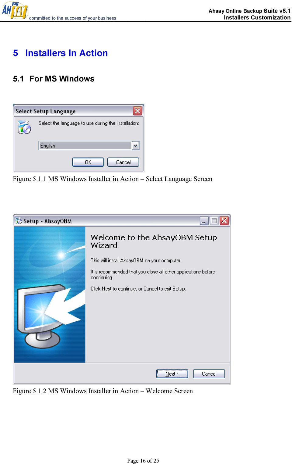 Installer in Action Select Language Screen