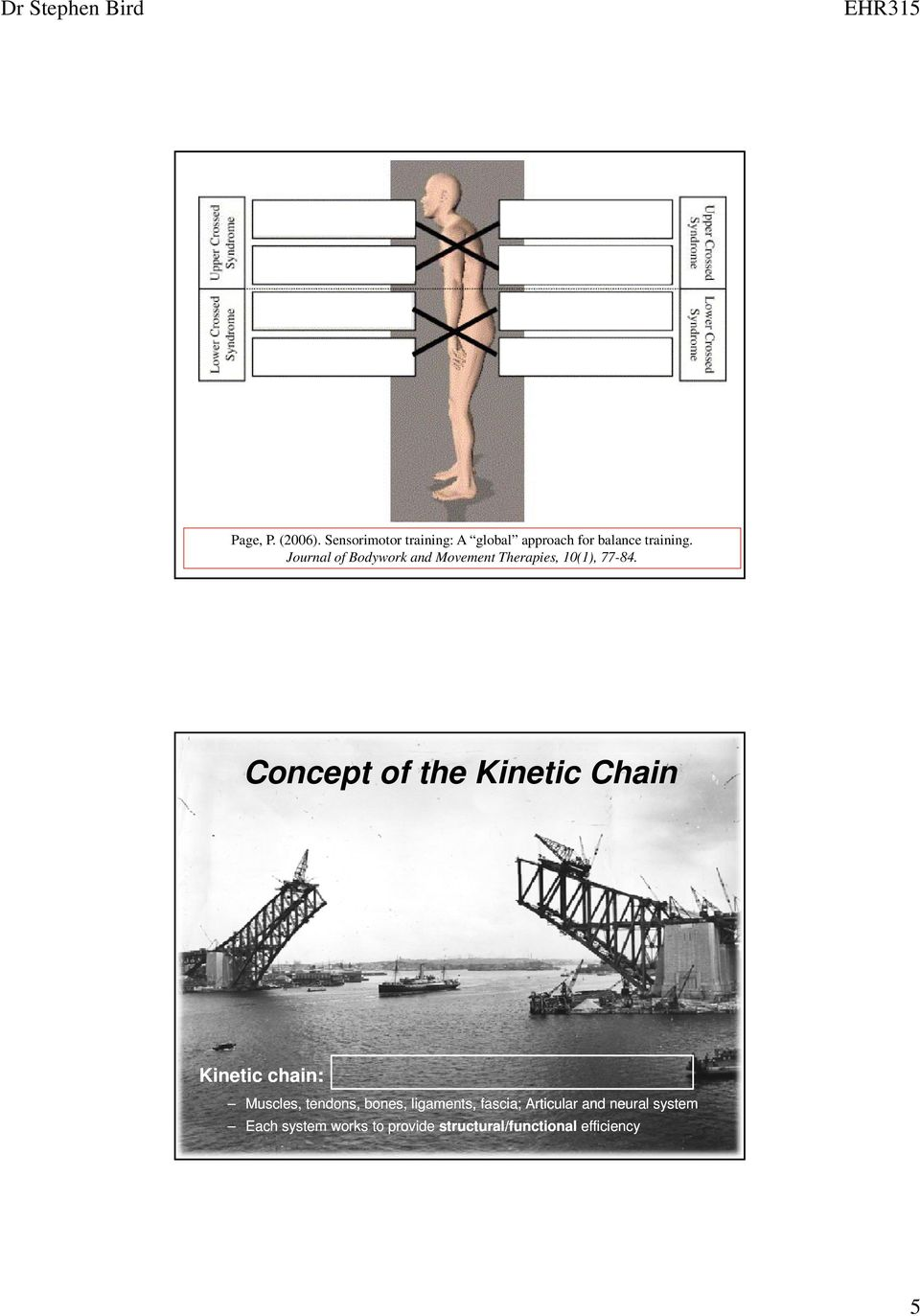 Concept of the Kinetic Chain Kinetic chain: Muscles, tendons, bones, ligaments,