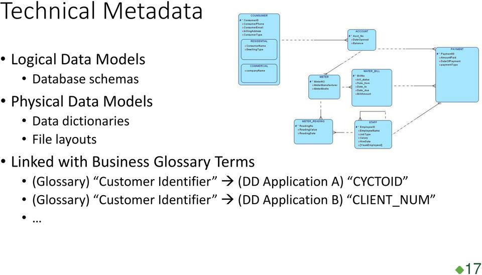 Glossary Terms (Glossary) Customer Identifier (DD Application A)