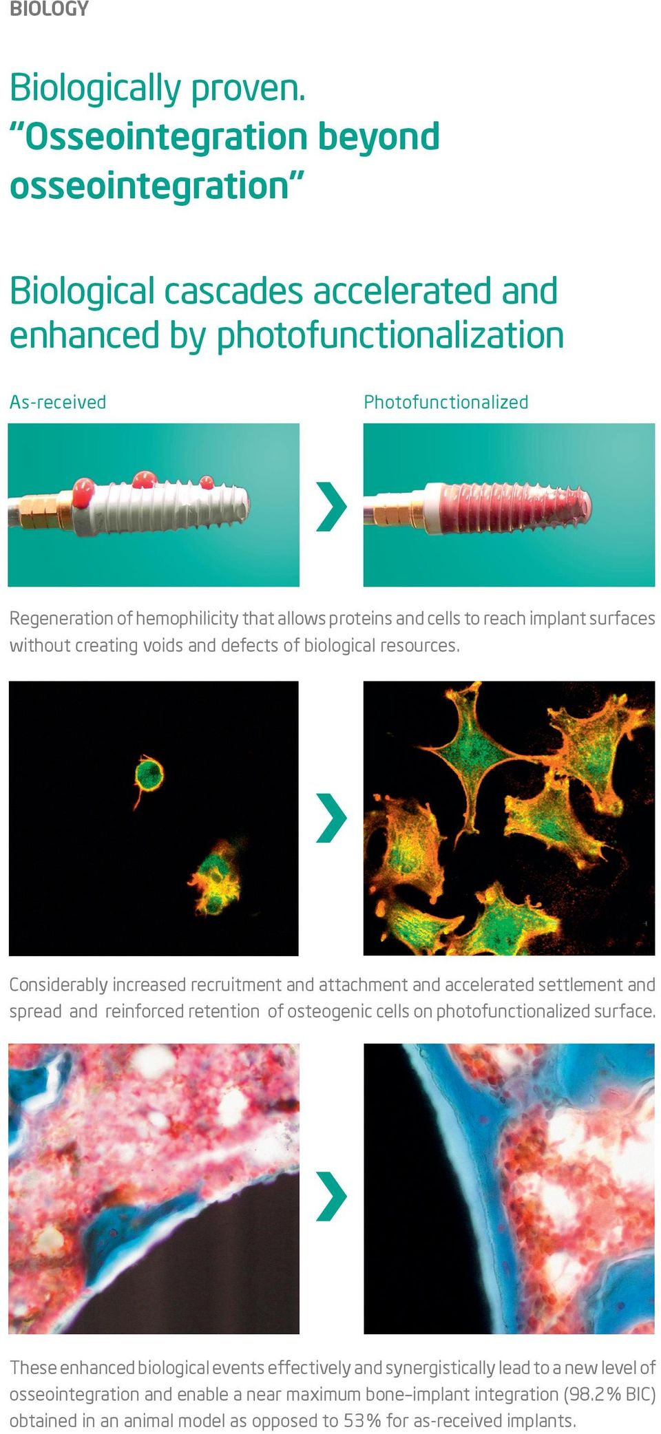 allows proteins and cells to reach implant surfaces without creating voids and defects of biological resources.