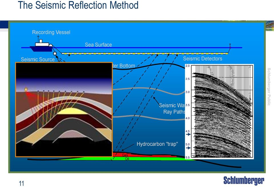 Bottom Seismic Wave Ray Paths Seismic