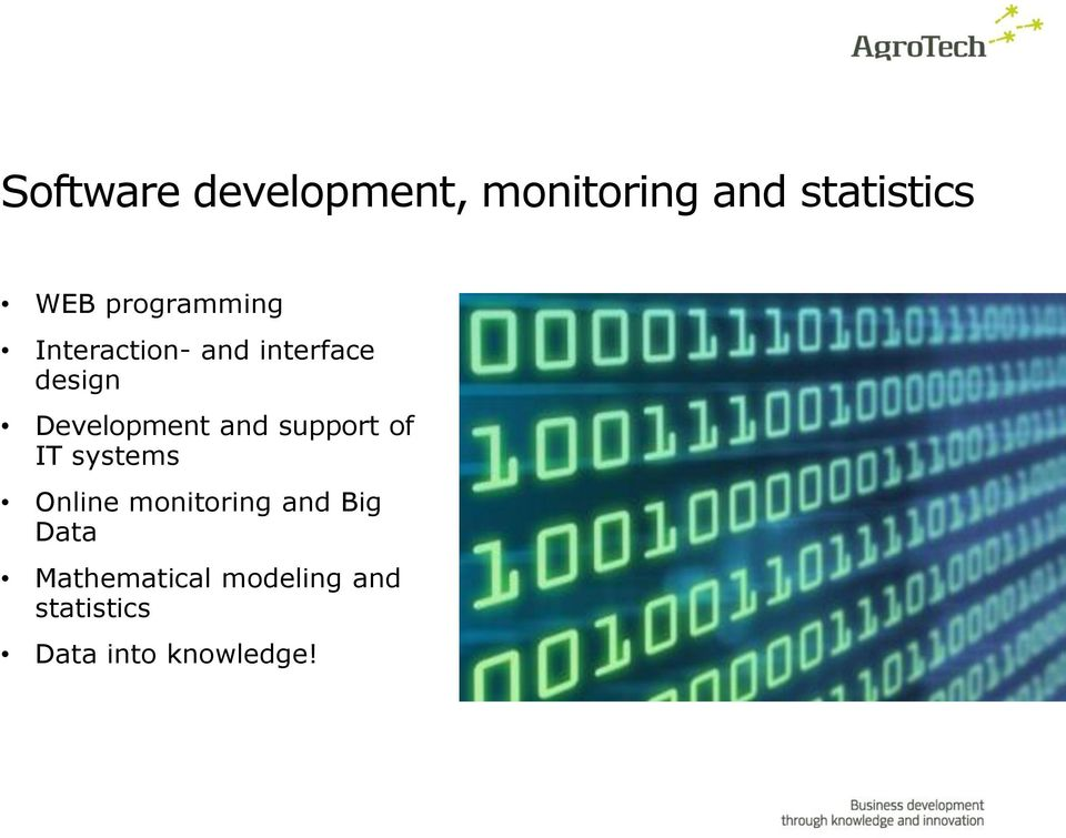 Development and support of IT systems Online monitoring